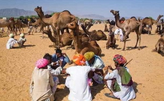 Chaman Duggal Private Tours (59)
