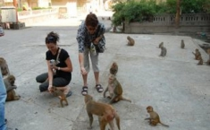 Chaman Duggal Private Tours (9)